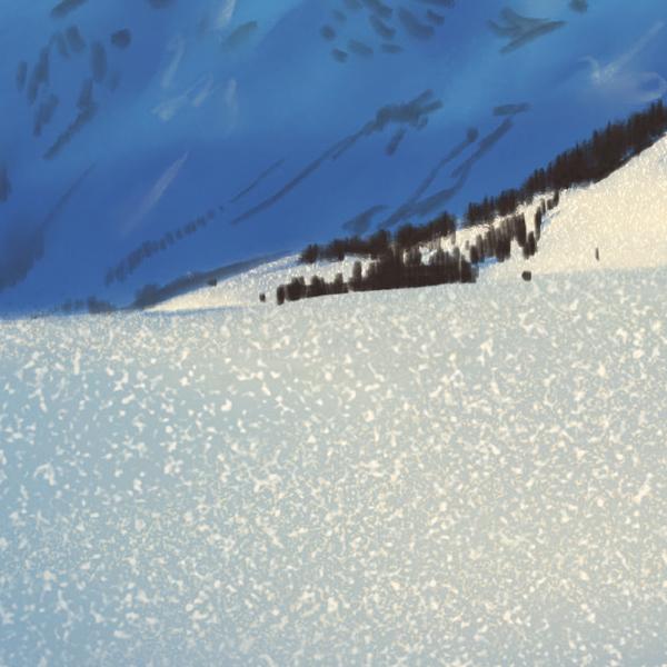 Detail Schnee am Rossfeld